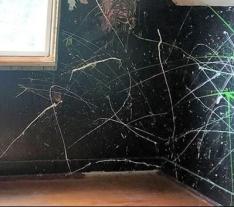 bedroom-1-upstairs-before-pic-7-2019-e1564424296391.jpg