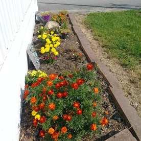 Flowerbed 1